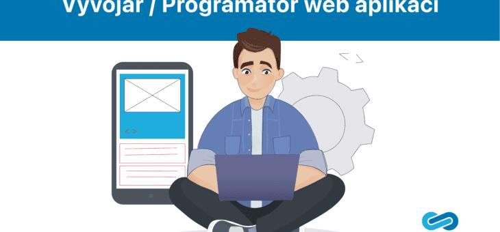 Web application developer / programmer
